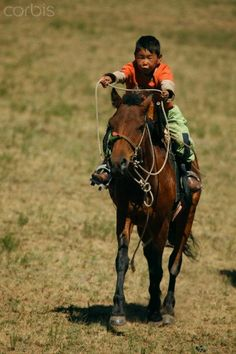 Little Rider. Mongolia