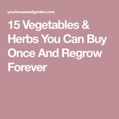 15 Vegetables & Herbs You Can Buy Once And Regrow Forever