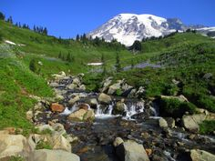 Parque Nacional do Monte Rainier – Wikipédia, a enciclopédia livre Monte Rainier, Half Moon Bay, Camping Spots, Go Camping, Camping Cabins, Best Places To Camp, Places To Go, Myrtle, Parc National