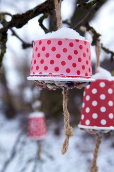 Make bird feed yourself with grains, fruits and fat - THE HOUSE - Make winter bird food yourself Best Picture For garden art For Your Taste You are looking for som - Garden Party Decorations, Diy Garden Decor, Garden Art, Garden Club, Bird Food, Color Rosa, Winter Garden, Winter Diy, Fruit