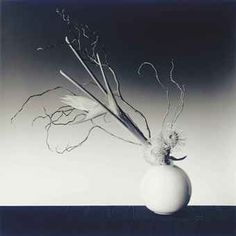 robert mapplethorpe flowers - Google Search
