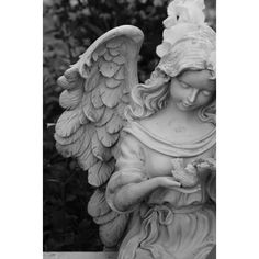 Angel Statues ❤ liked on Polyvore featuring home, home decor, angel statue and angel statuary