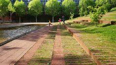 Michele & Miquel. Jardín Niel Toulouse.