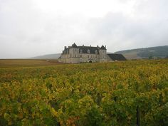 VOYAGER EN FRANCE | Chateau du clos de Vougeot en Bourgogne, #France, #voyagerenfrance