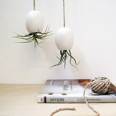 Hanging Air Plant Planter - Silky Matte White by mudpuppy on Etsy, €12,25
