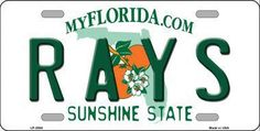 Rays Florida State Background Metal Novelty License Plate