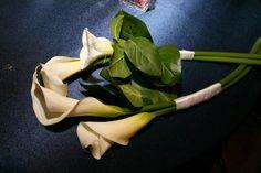 LOVE the small simple white Calla Lillie bridesmaid bouquets