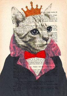 Cat & Book illustration <3