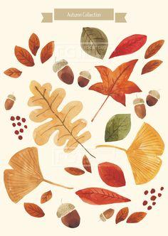 U160921, 유자디자인, 일러스트, 가을, 식물, 추석, 백그라운드, 한가위, 명절, 수채화, 수작업, 북유럽, 빨간색, 녹색, 연두, 주황, 갈색, 단풍잎, 은행잎, 도토리, 빨강, 일러스트레이션, 나뭇잎, 패턴, 엽서, 카드, 나무, 잎, 리본, 배너, 이벤트배경, 낙엽, 시즌, 풍경, 가을배경, 삽화, 배경이미지,#유토이미지