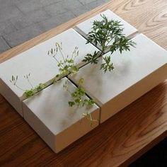 Interior Planter by Arwin Caljouw