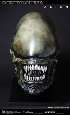 Alien: Covenant Xenomorph Life Size Head Prop Replica - The Toyark - News Predator Costume, Predator Cosplay, Predator Alien, Arte Alien, Alien Art, Alien Covenant Xenomorph, Alien Photos, Giger Alien, Monsters