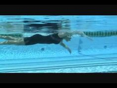 Total Immersion Coach Maria Crowley swimming with Terry Laughlin and TI Coach Shinji Takeuchi. Triathlon Training, Crowley, Whale, Swim Workouts, Swimming, Teaching, Business Ideas, Youtube, Animals