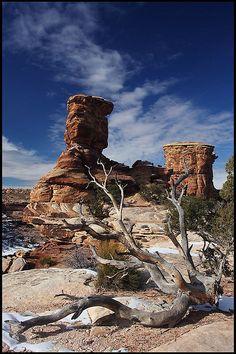 Big Spring Canyon Overlook, Canyonlands National Park, Utah; photo by .rickz