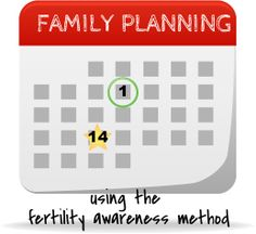 Family Planning for Number 2: The Fertility Awareness Method // writing chapter three