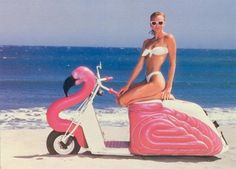Flamingo scooter