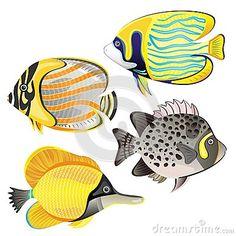Exotic fish set by Evdakovka, via Dreamstime