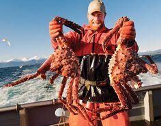 Cận cảnh việc săn bắt cua hoàng đế Alaska King crab
