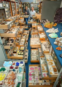 An assortment of mineral specimens from the Department of Mineral Sciences'…