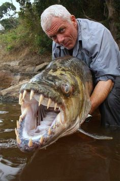 Fishing for Goliath Tigerfish ...