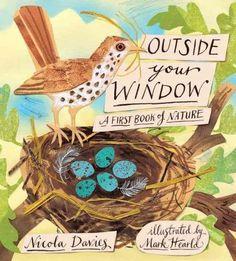 NEW Outside Your Window: A First Book of Nature by Nicola Davies Hardcover Book