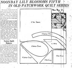 Noonday Lily Blossoms quilt pattern