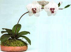 белая орхидея из бисера