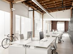 All White Open Plan with Timber Ceiling