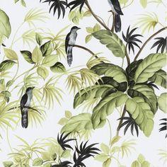 P&S International P+S International Tropical Exotic Birds Trees Leaves Wallpaper 05550-20