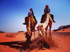 Time for us today to go for a desert camel  ride except the camels   had other ideas.  They wanted lunch! Wadi Rum is an unusual area where crumbling rocky hills meet red orange and yellow sand. We are loving our week so far in Jordan. This is our 5th year of nomadic life.  NUMBER ONE Single Parent Travel Blog (Nomadic) NUMBER THREE Australia & NZ Travel Blog (Family) NUMBER TWELVE Australia & NZ Travel Blog (General)   Photo By @exploramum   Location  JORDAN  Please come back each day to…