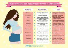 Infografía: Nutrientes necesarios durante el embarazo