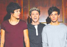 harry niall lou