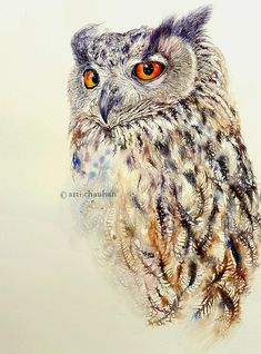 Owl Art Watercolour Painting Original Art Owl Painting by