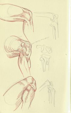 Arakaki-dessin-anatomie-humaine_1