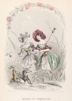 'Les Fleurs Animées', 1847