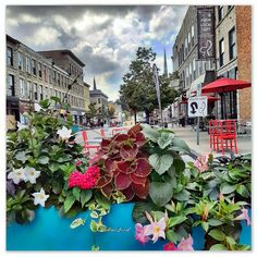 📸 @thatcambridgewoman Cambridge, Ontario, Canada, Photography, Photograph, Fotografie, Photoshoot, Fotografia