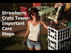 ▶ Strawberry Crate Tower - important care steps -caring for your strawberry crate tower is easy with these simple tips!