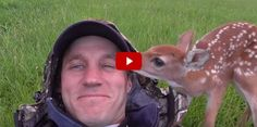After This Man Rescued a Baby Deer, It Refused to Leave His Side - http://www.housebeautiful.com/lifestyle/kids-pets/a4680/baby-deer-man-best-friends/#utm_sguid=157526,ec0b90be-6694-b36a-2fc4-4f94b6bc02ac