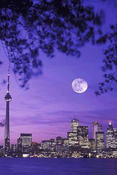 Toronto Places Around The World, Travel Around The World, Around The Worlds, Wonderful Places, Beautiful Places, Beautiful Pictures, Canada Eh, Toronto Canada, Places To Travel