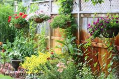 Hanging baskets on the fence | 21 Gorgeous Flower Planter Ideas to inspire your garden