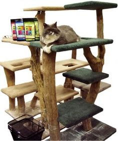 Cat Tree & Condos, To Make Your Cat Adore You #catfurniture - See more cat furniture at Catsincare.com