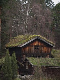 sod roof cabins, folk museum, oslo