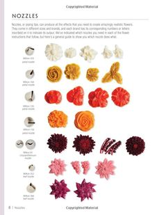 100 Buttercream Flowers: The Complete Step-by-Step Guide to Piping Flowers in Buttercream Icing: Valeri Valeriano, Christina Ong: 0806488424358: Amazon.com: Books