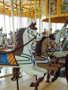 National Carousel Association - Geelong - Dare Jumpers