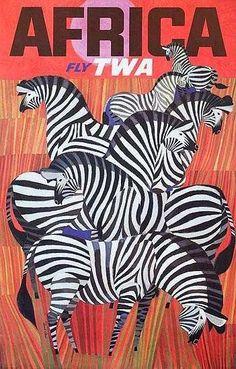 Zebra + Africa Design + Africa + Travel