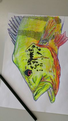 63 Best Art Images Fish Art Brown Trout Fishing