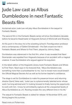 Fantastic Beasts 2 - Albus Dumbledore