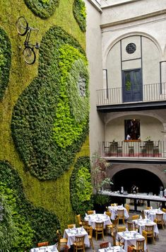 Living Green Wall - Mexico City Green garden design Climbing Exterior design architecture