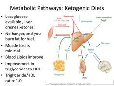 Metabolism Efficiency on Keto: Alessandro Ferretti - Ketogains