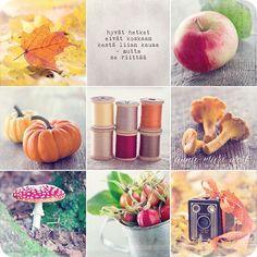 Syksyn värejä! - Käy katsomassa korttiarvonta Facebook-sivullani  #annamariwest #syksy teksti #laurapennanen