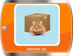 Spanish for Children / Español Para Niños - Position Words - Lots of great visuals with audio from this site!